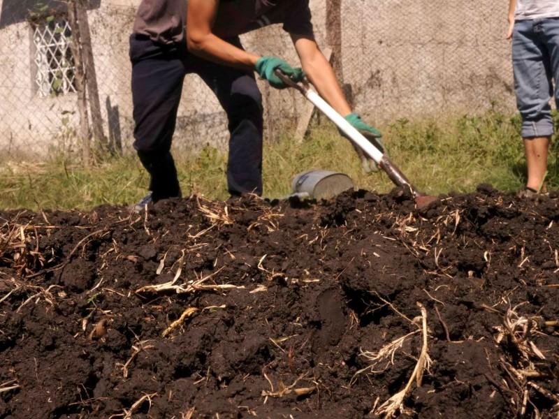 Removiendo la tierra